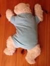 Baby Body lightblue size 62/68