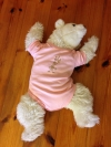 Baby Body lightblue rose 74/80